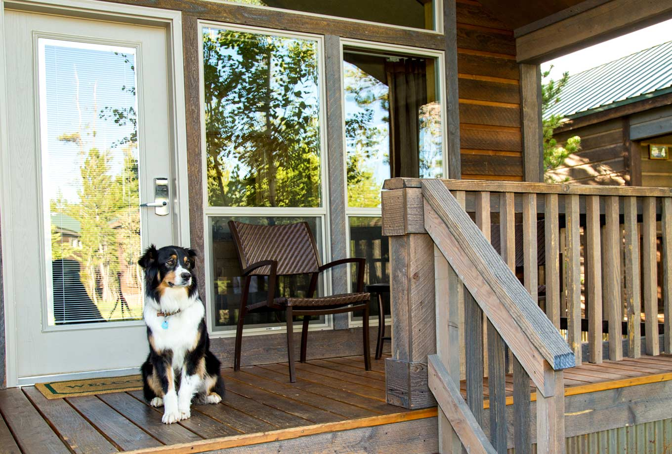 West Yellowstone pet friendly lodging - Explorer Cabins at Yellowstone