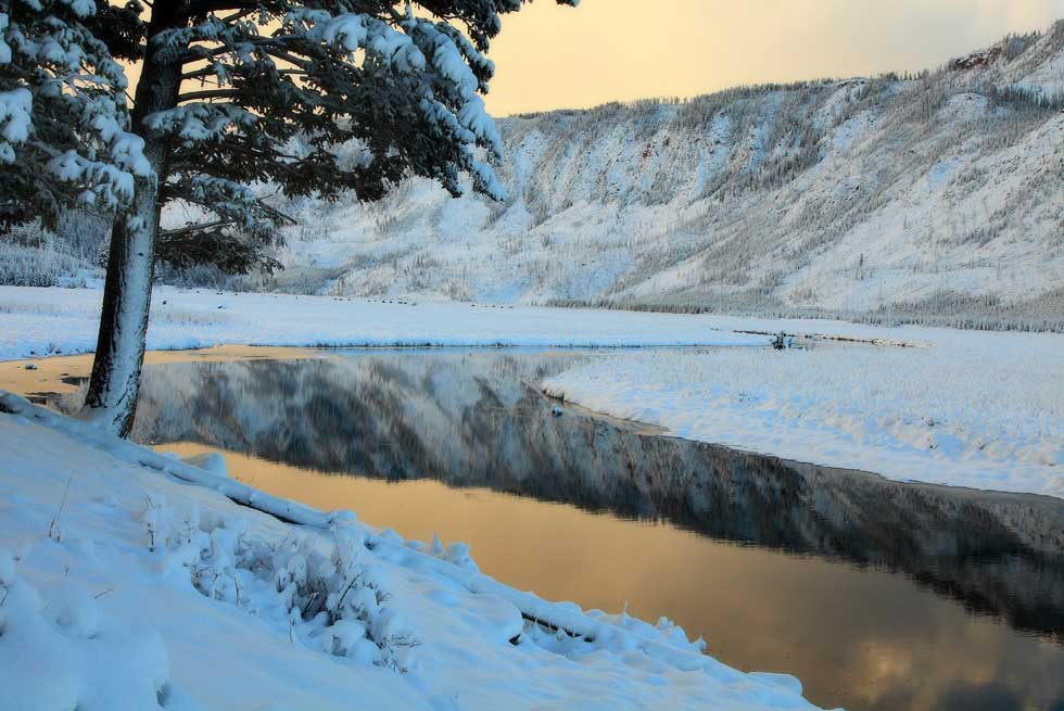 Madison River during winter in Yellowstone National Park