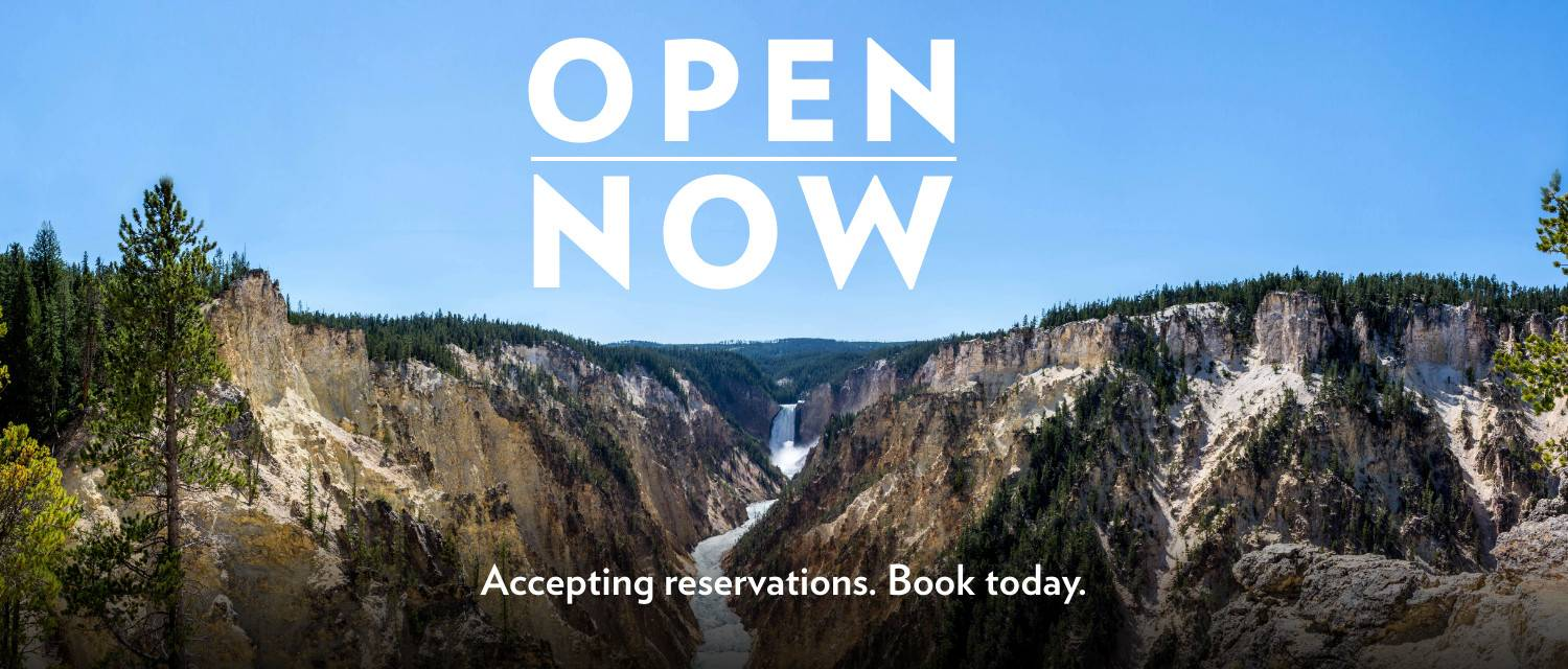 Now Open | Accepting Reservations Book Now